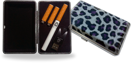 electronic cigarette carrying cases